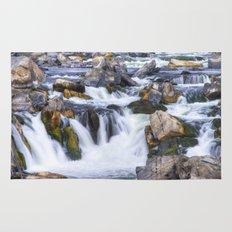 Great Falls Virginia Rug