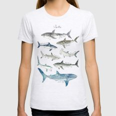 Sharks Womens Fitted Tee Ash Grey SMALL