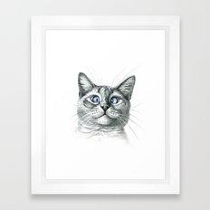 Cross Eyed cat G122 Framed Art Print