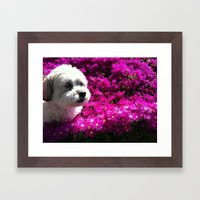 Spring Puppy Framed Art Print