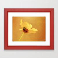 Buttercup Lady Framed Art Print