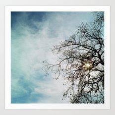 Blue Sky and Tree Art Print