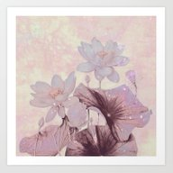 Pastel Waterlily Art Print