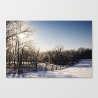 Frozen Countryside Canvas Print