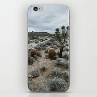 Mojave iPhone & iPod Skin