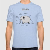 Anatomy of an Elephant Mens Fitted Tee Tri-Blue SMALL
