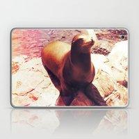 Seal Isn't a Man Laptop & iPad Skin