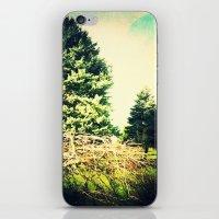 Simplicity iPhone & iPod Skin