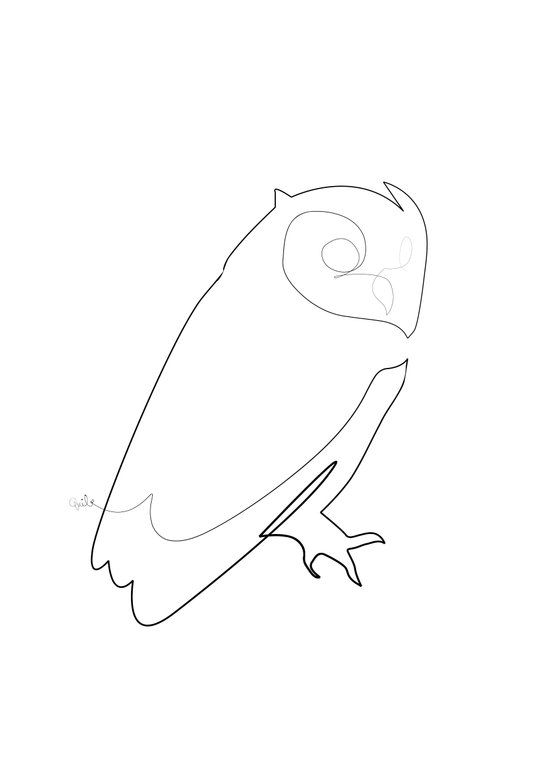 Single Line Art Print : One line owl art print by quibe society