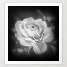 Butterfly Rose. Art Print
