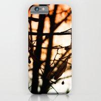 Late Autumn Chill iPhone 6 Slim Case