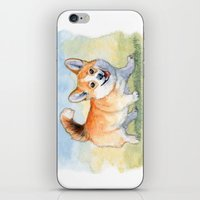 Funny Welsh Corgi 859 iPhone & iPod Skin
