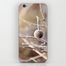Hanging by a Thread iPhone & iPod Skin