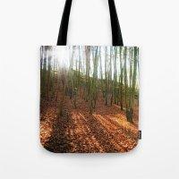 Autumn Sun And Shadows Tote Bag