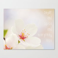sugar & spice Canvas Print