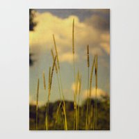 A Place To Breathe Canvas Print