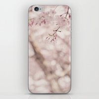 Pastel Sakura iPhone & iPod Skin