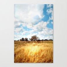 the homestead. Canvas Print