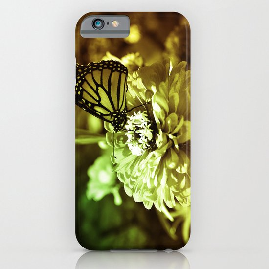 Butterfly on Flower - Color iPhone & iPod Case