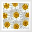 Daisies Galore Art Print