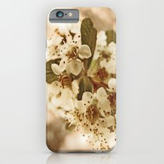 white blossoms on a tree. iPhone 6 Slim Case