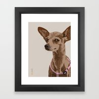 Macy the Chihuahua Dog Framed Art Print