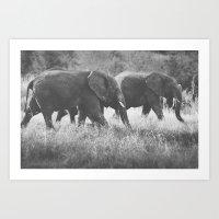 Grazing Elephants Art Print