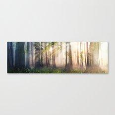 Constancy Canvas Print