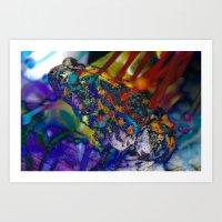 Fire Toad Art Print