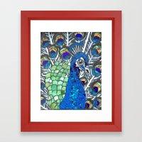 Small Peacock Framed Art Print