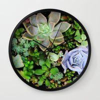 Collection of Succulents Wall Clock