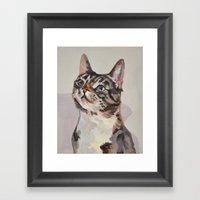 Kitten / Cat Framed Art Print
