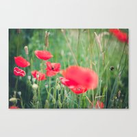 Fly, Bumblebee, Fly Canvas Print