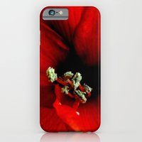 iPhone & iPod Case featuring Red Amaryllis by Chaos Gate Designs