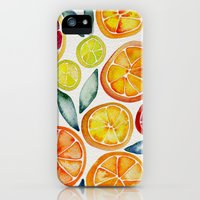 iPhone 5s & iPhone 5 Cases featuring Sliced Citrus Watercolor by Cat Coquillette