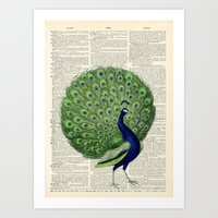 Vintage Peacock Art Print