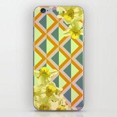 Brixan  iPhone & iPod Skin