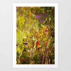 Fall Field Art Print