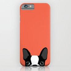 Boston Terrier iPhone 6 Slim Case