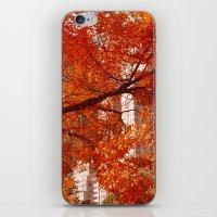 New York City Foliage iPhone & iPod Skin