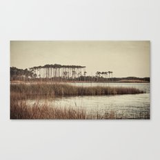 trees on western lake Canvas Print