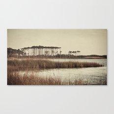 trees on western lake Canvas Print