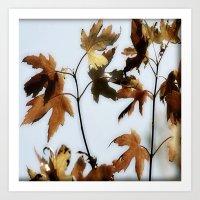 When Leaves Fall Art Print