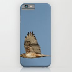 Ferrougenous Hawk iPhone 6 Slim Case