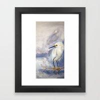 Great White Heron (Ardea alba) Framed Art Print