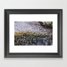 La Jolla Rocks Framed Art Print