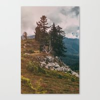 Northwest Forest Canvas Print