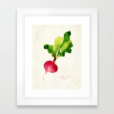 Watercolor radish Framed Art Print