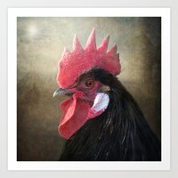 Black Rooster Art Print