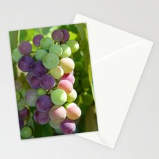 Wine on the Vine Stationery Cards